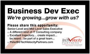 Business Development Executive - TechVelocity Partners