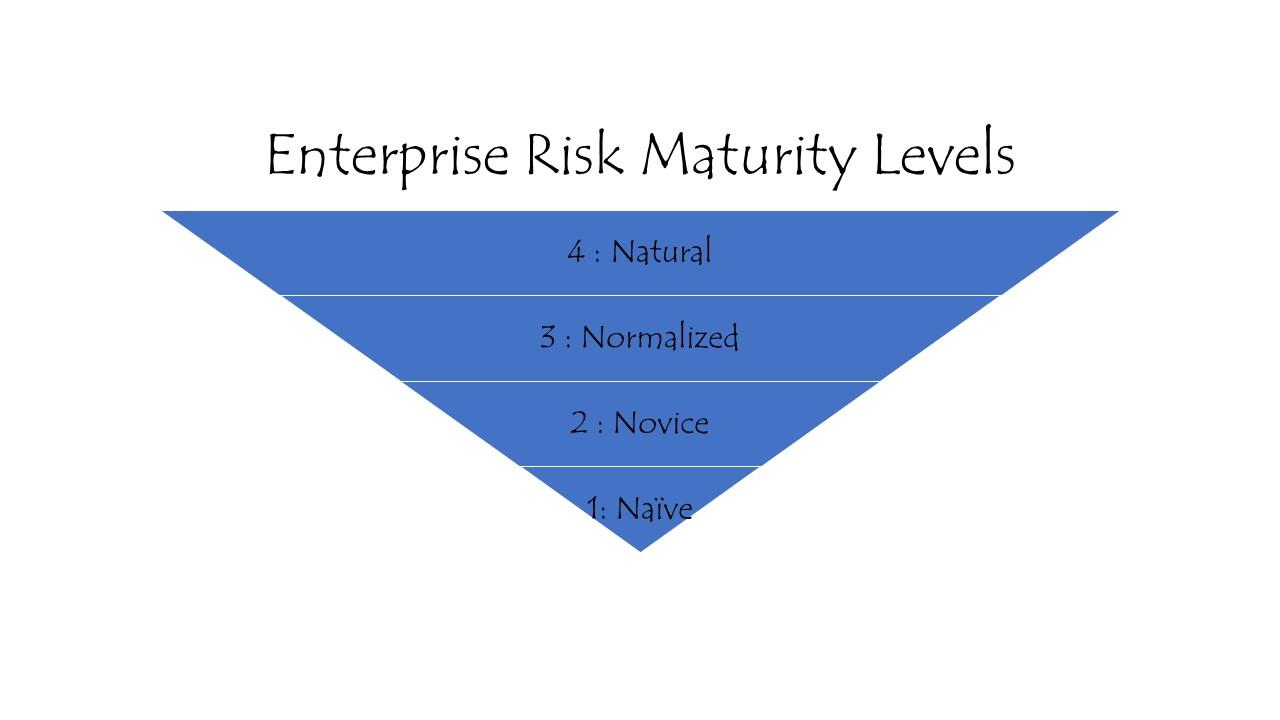 Enterprise Risk Maturity Levels
