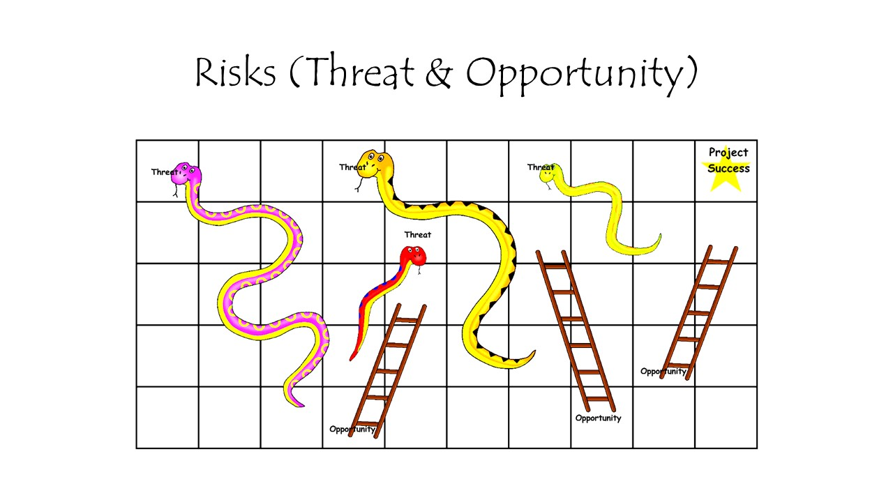 Risk Threat Opportunity